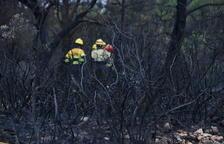 Els Bombers donen per controlat l'incendi de Querol