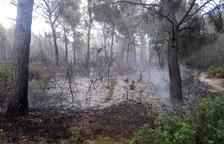 Extingit l'incendi forestal de Sant Salvador, que ha cremat 3.500 metres quadrats