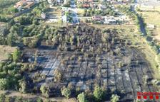 Un incendi de vegetació crema a la Selva del Camp