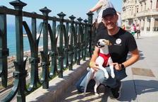 Pipper, el gos'influencer'arriba a Tarragona
