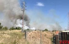 Estabilitzat l'incendi que s'ha declarat aquest dimarts a la Selva del Camp