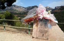 Horta, una dècada veient rebrotar del foc la zona dels Reguers amb llàgrimes als ulls