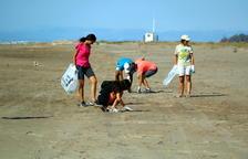Voluntaris participen en un inventari de brossa al Delta per crear campanyes de sensibilització
