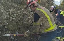 Controlat un incendi que ha afectat 1.800 metres quadrats de vegetació a la Selva del Camp