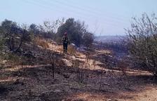 Un incendi forestal obliga a confinar veïns i usuaris de La Muntanyeta