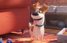 'Mascotes 2' i la comèdia francesa 'Lola i els seus germans' arriben en català als cinemes