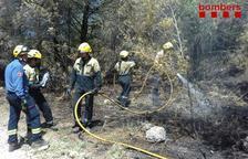 Cremen 1.280 metres quadrats en un incendi forestal a Albinyana