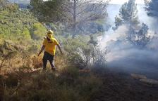 L'incendi de Querol ha cremat 1,5 hectàrees de vegetació