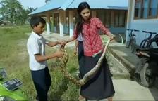 Captura una serp per protegir als seus alumnes