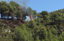 L'ADF extingeix una represa de l'incendi de Querol