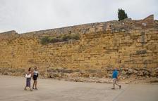 La Reial Societat Arqueològica de Tarragona veu «prioritari» retirar els arbustos de la Muralla