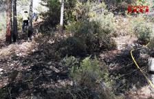 L'incendi de Prat de Comte ha cremat 150 metres quadrats d'una pineda