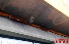 Rescatan a un gato que ha caído a una red protectora de un edificio en Tarragona
