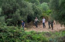 Finalitza l'operatiu de captura de porcs vietnamites a Sant Pere i Sant Pau