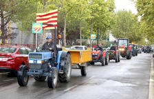 Els pagesos de l'avellana es reuniran amb les cooperatives per abordar la crisi de preus
