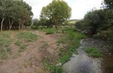 Organitzen una plantada popular a l'entorn de la Granja dels Frares del Morell
