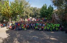 Tres-cents participants en la plantada popular d'arbres al Morell