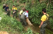 El Gaià busca guaites ambientals