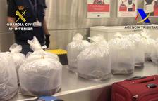 Detenen un passatger al Prat que portava més de 26 quilos d'angules vives en el seu equipatge