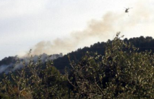 S'enfronta a 7,5 anys de presó per un incendi originat per una calçotada al Baix Camp
