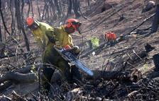 Treball contractarà persones a l'atur per reforestar la zona de l'incendi de la Ribera d'Ebre