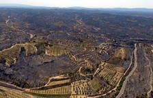 El anuncio de desmantelamiento del Castor y el incendio de la Ribera, temas del año en el Ebro
