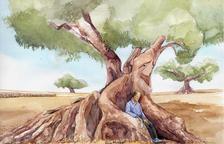 Dedicado a todo el mundo que ama los olivos