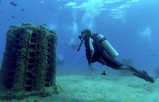 Nuevos biotopos en nuestro fondo marino