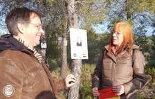 Col·loquen 3 plaques noves al bosc de La Fatarella en memòria de brigadistes de la Guerra Civil