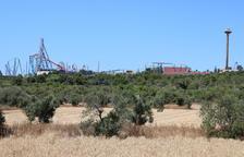 'Aturem Bcn World' y GEPEC-EdC denuncian la venta de los terrenos del Hard Rock por parte de la Generalitat