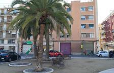 Adjudicat el contracte dels treballs de millora de la plaça dels Infants del barri del Port