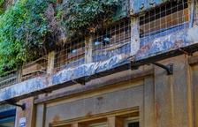 El jardín vertical del edificio de la Tabacalera continúa en estado de degradación