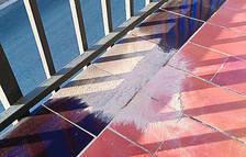 Repsol determina que la pols blanca de Vilallonga del Camp no és plàstic