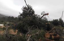 Veïns de Maspujols alerten de la perillositat d'un cable abatut pel temporal