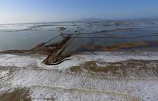 Agricultura comptabilitza, finalment, 2.000 hectàrees afectades pel temporal al delta de l'Ebre