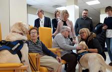 El Hospital de Jesús de Tortosa incorpora perros y muñecas hiperrealistas para mejorar el bienestar de los usuarios