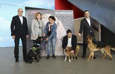 El Saló de la Mascota, Bestial, potenciarà les activitats infantils