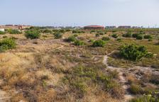 El ayuntamiento de Tarragona prevé urbanizar 8 sectores y construir 3.000 viviendas en 3 años