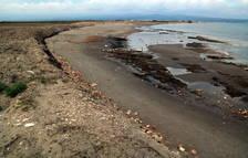 El delta del Ebro, pendiente de las obras de emergencia por el Gloria paradas por el coronavirus