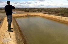 Cultivar almejas donde ya no es rentable plantar arroz