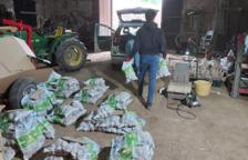 Una família de Prades ven 3.000 quilos de patates en un dia per Whatsapp