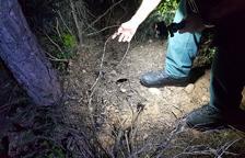 Investigat un caçador que va ser enxampat armat i col·locant paranys de nit al Pinell de Brai