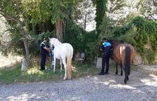 Dos agentes con los caballos.