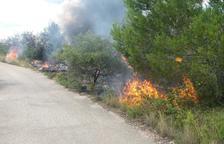Controlado el incendio de vegetación forestal localizado cerca de la depuradora de Torredembarra
