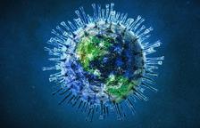 Un estudi de la URV confirma que un antibiòtic veterinari limita la replicació del coronavirus