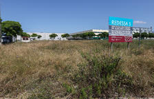 Redessa subhasta 14 parcel·les del Polígon AgroReus en quatre lots