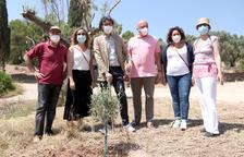 Plantación simbólica de olivos para conmemorar el primer aniversario del incendio de la Ribera d'Ebre