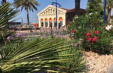 Las zonas verdes del Port de Tarragona compensan más de 1.500 toneladas de CO2
