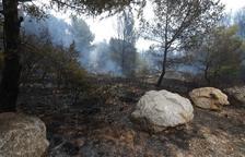 Crema una hectàrea de vegetació a Cunit