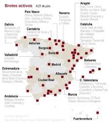 Espanya compta amb 224 brots actius amb 2.622 casos associats